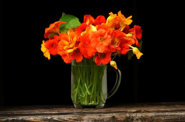 Mengawetkan Bunga Potong