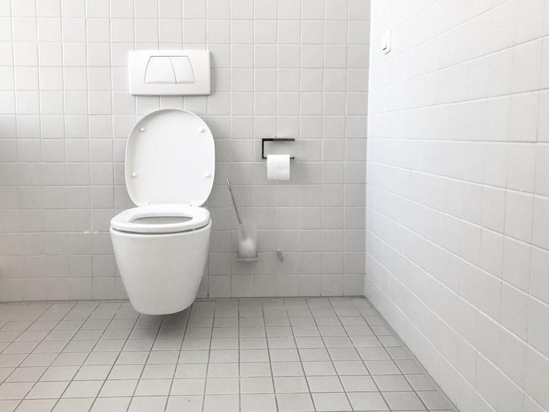 Cara Memilih Toilet Rumah Sesuai Anggaran