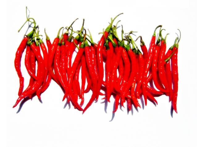 Membuat Pestisida Organik dari Cabe Merah